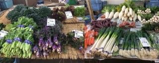 バラエティー豊富な野菜