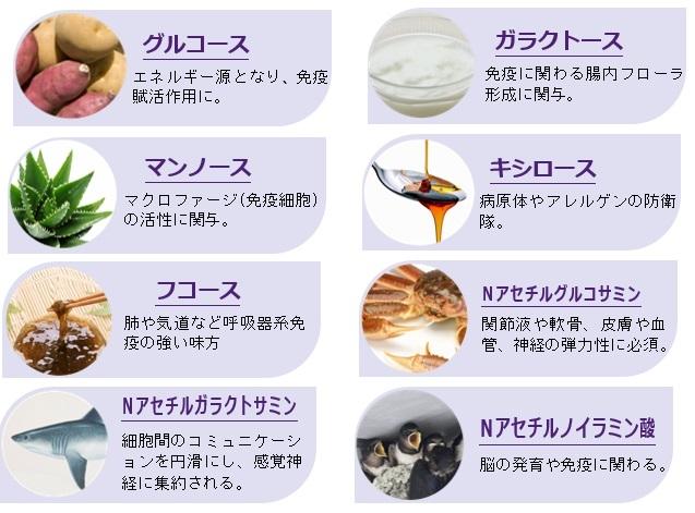 糖鎖8種類